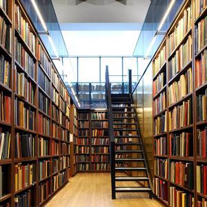 Библиотеки Ельца